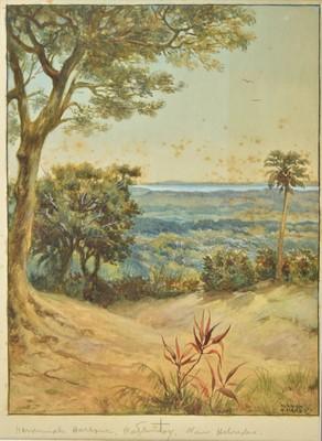 Lot 15 - South Seas. Norman Hayward Hardy (1842-1933), watercolour