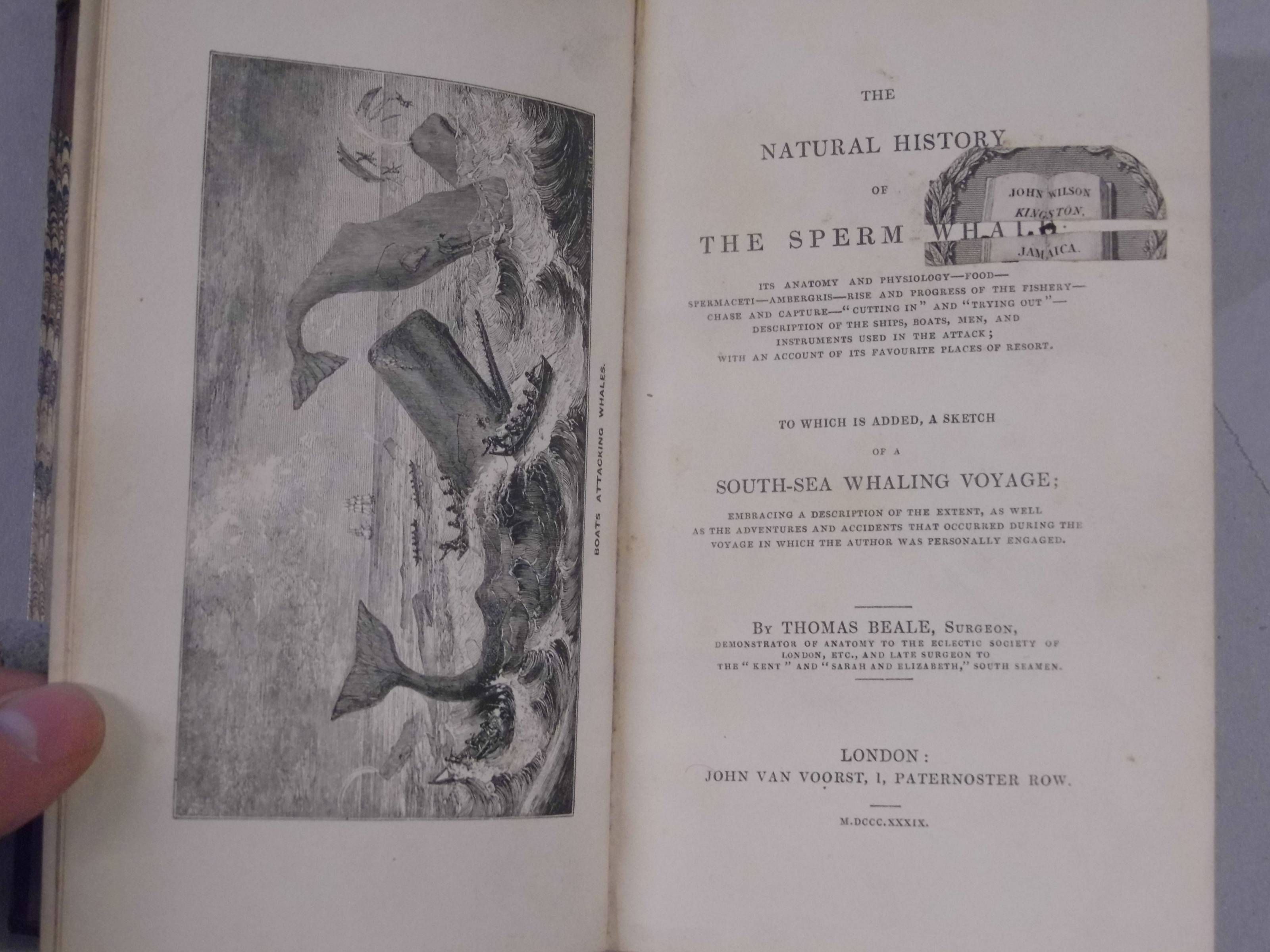 Lot 13 Beale Thomas The Natural History Of The
