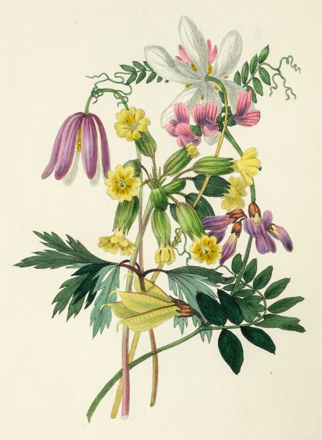 Lot 370 - Hey (Rebecca). The Moral of Flowers, 1833