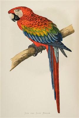 Lot 388 - Greene (W. T.). Parrots in Captivity, 1884-1887
