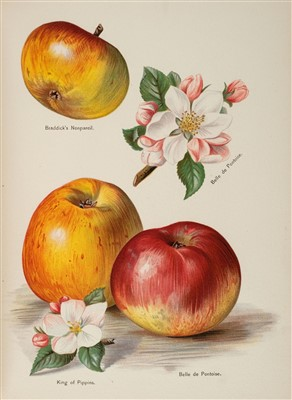 Lot 390 - Wright (John). The Fruit Grower's Guide, circa 1890