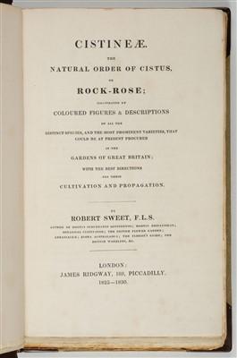 Lot 365 - Sweet (Robert). Cistineae, 1825-1830