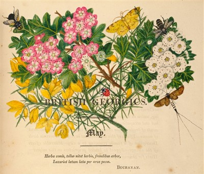Lot 343 - Grahame (James). British Georgics, 1st edition, 1809, extra-illustrated with floral watercolours