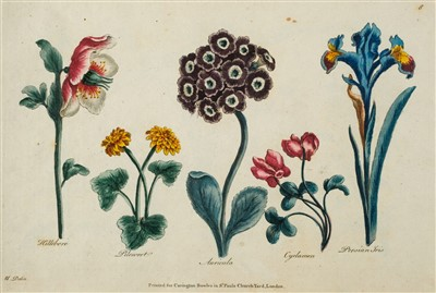 Lot 285 - Heckle (Augustin). Drawing Book for Ladies; or Complete Florist, [1785?]