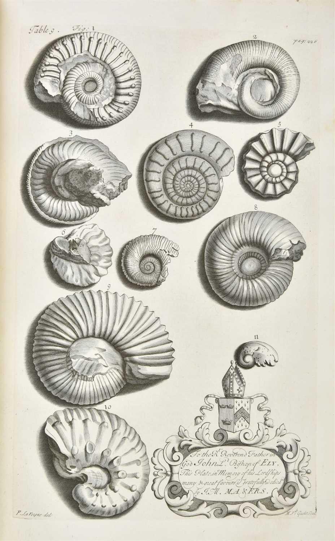 Lot 329-Morton (John). The Natural History of Northamptonshire, 1712