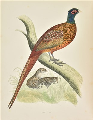 Lot 75-Morris (Beverley). British Game Birds and Wildfowl, 1864