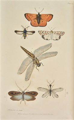 Lot 71-Kirby (William & Spence, William). An Introduction to Entomology, 4 volumes, mixed editions, 1822-26