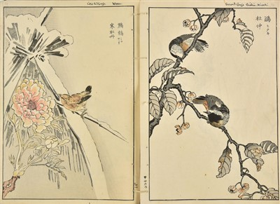Lot 68-Bunrei (Maekawa, 1837-1917). Studies of Birds and Plants by Bunrei