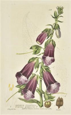 Lot 65-Baxter (William). British Phaenogamous Botany, 6 volumes, Oxford, 1834-1843
