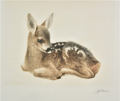 Lot 32-Meyer-Eberhardt (Kurt, 1895-1977). Young Roe Deer and Young Donkey