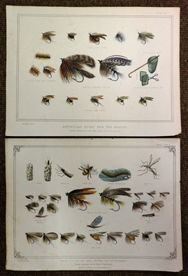 Lot 19-Dogs & Natural History. A mixed collection of approximately 400 prints, 19th & 20th century