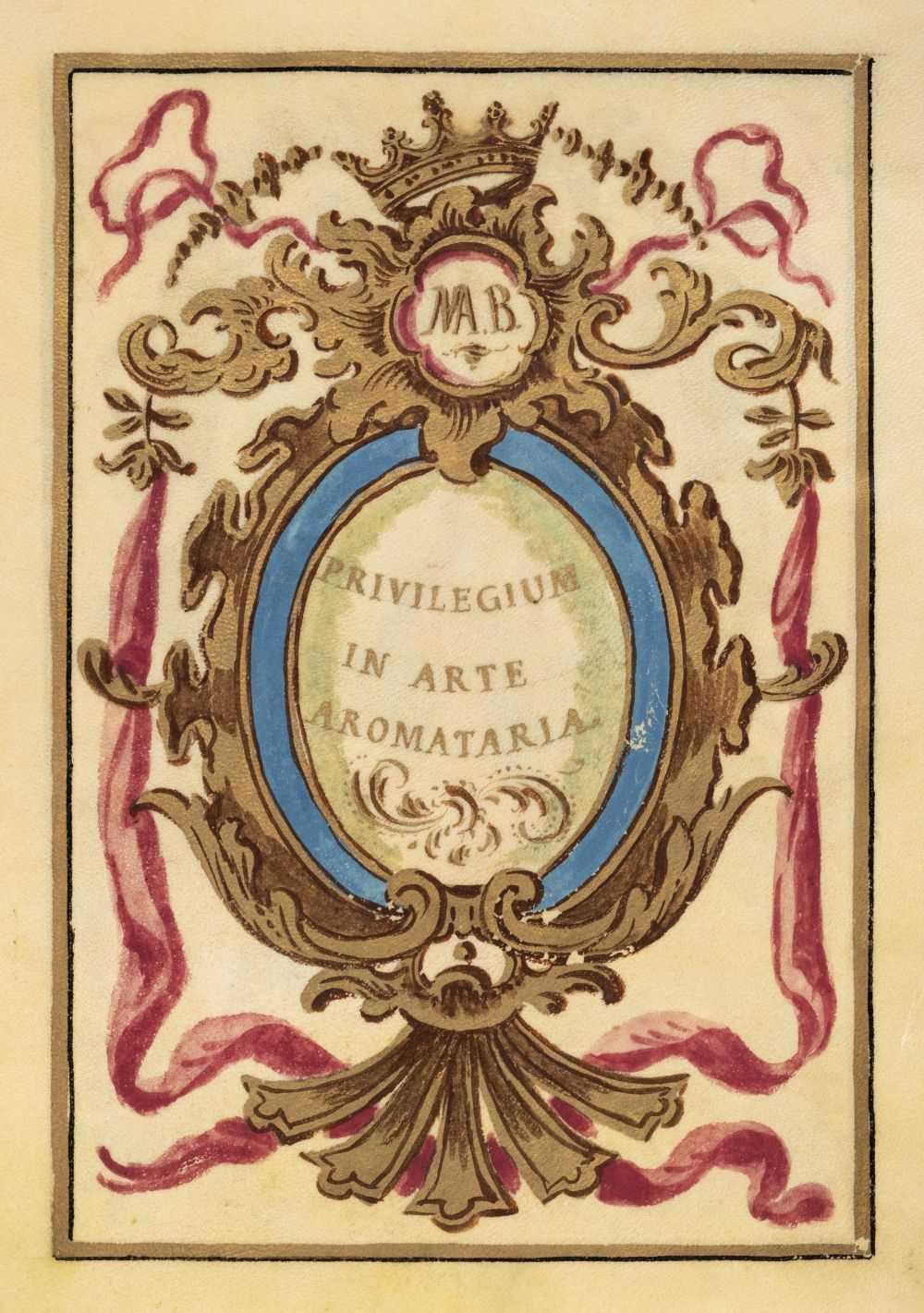 Illuminated vellum manuscript art instruction images CD