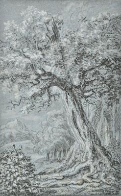 Lot 314 - Dutch School. Trees in a landscape, 17th century