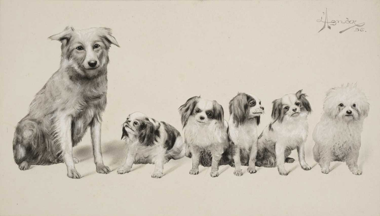 Lot 21-Nordstrom (Erik Agnar). A collection of 35 photographs, c. 1891-1905, mostly platinum prints
