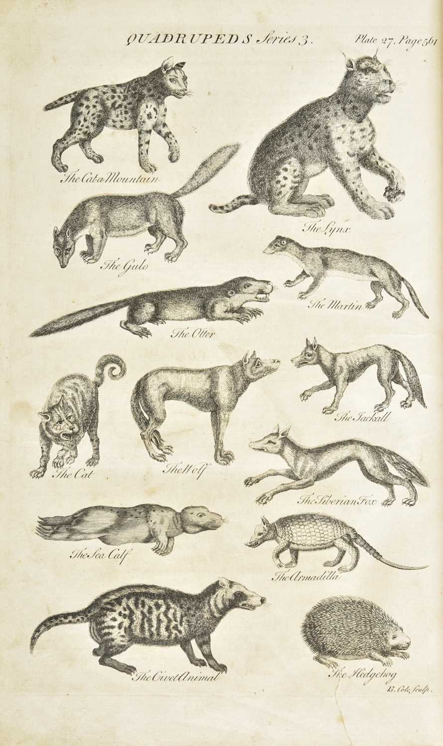Lot 240-Hill (John). An History of Animals, 1st edition, 1752