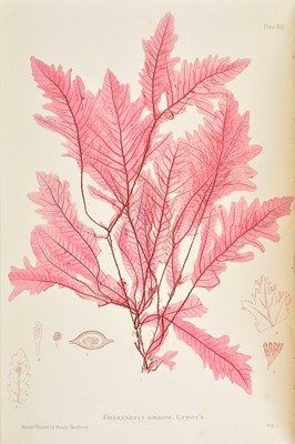 Lot 242 - Johnstone (W. G., & Alexander Croall). The Nature-Printed British Sea-Weeds, 1st edition, 1859-60