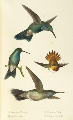 Lot 212-Montes de Oca (Rafael). Ensayo Ornitologico de los Troquilideos o Colibries de Mexico, 1875