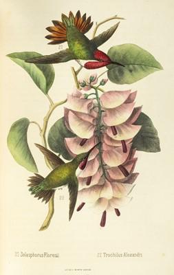 Lot 212 - Montes de Oca (Rafael). Ensayo Ornitologico de los Troquilideos o Colibries de Mexico, 1875