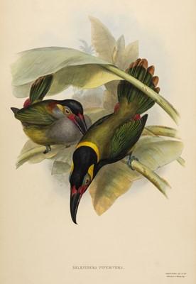 Lot 75 - Gould (John). Selenidera Piperivora (Guyana Toucanet), 1834