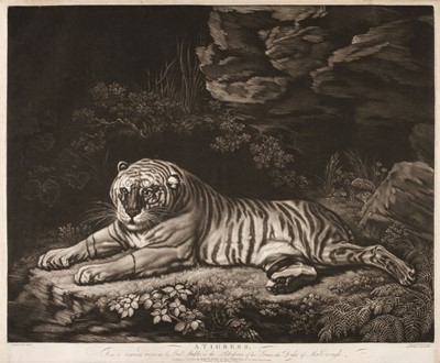 Lot 393-Laurie, (Robert, circa 1755-1836). A Tigress, after George Stubbs, 1800