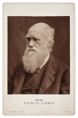 Lot 5-Darwin (Charles, 1809-1882). Portrait [by Lock & Whitfield], 1877, printed 1880s, Woodburytype