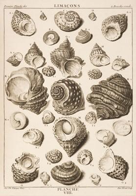 Lot 102 - Dezallier d'Argenville (A. J.). La Conchyliologie, contemporary manuscript abridgment, c.1780