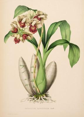Lot 109 - Linden (Jean-Jules). Pescatorea. Iconographie des orchides, 1st edition, 1854-5