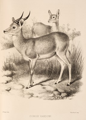 Lot 20 - Selous (F. C.). A Hunter's Wanderings in Africa, 1st edition, 1881, & 4 others, travel