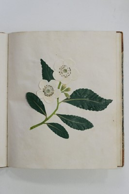 Lot 469 - Album. An album of flower collages, circa 1830s-1840s
