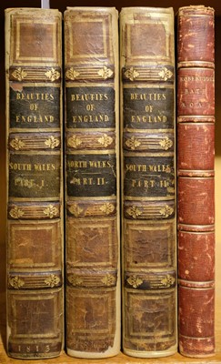 Lot 40 - Rees (Thomas). The Beauties of England and Wales ... South Wales, 1815