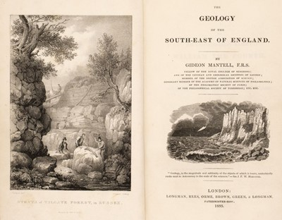 Lot 96 - Mantell (Gideon). The Geology of the South-East of England, 1st ed., 1833