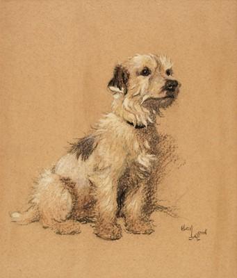Lot 363 - Aldin (Cecil Charles Windsor, 1870 - 1935). Terrier study