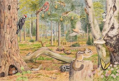 Lot 492 - Barrett (Peter, 1935). American Woodland Landscape