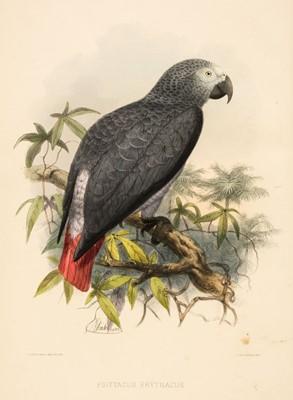 Lot 97 - Keulemans (John Gerard). A Natural History of Cage Birds