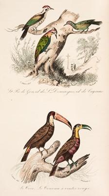 Lot 89 - Buffon (Georges Louis Leclerc, Comte de). Keepsake d'Histoire Naturelle, 1839