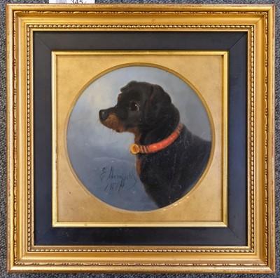 Lot 345 - Armfield (Edward). Portrait of a Black & Tan Terrier, 1877