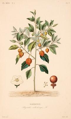 Lot 92 - Dupuis (A. & Reveil, O.). Flore Medicale, Paris: Abel Pilon, 6 volumes, no date, c. 1887