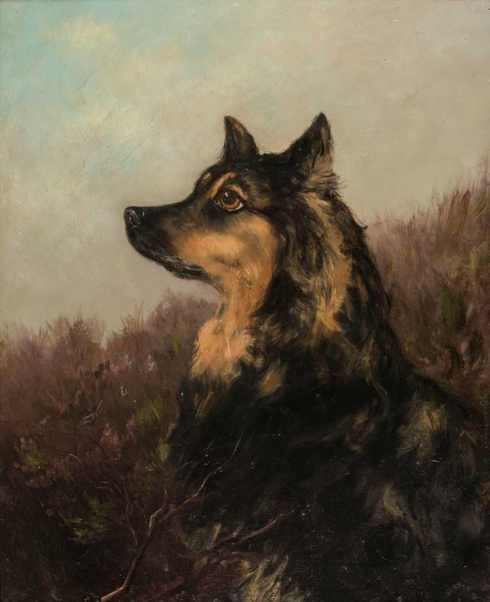 Lot 346 - Stevenson (William Grant, 1849-1919). Portrait of a collie dog in a landscape