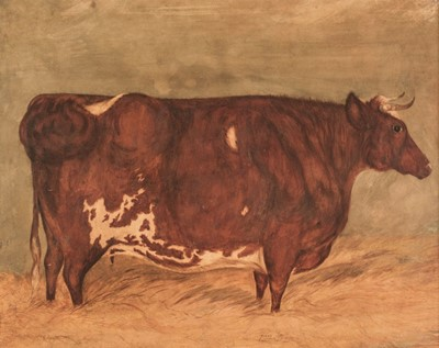 Lot 350 - English Naive School (late 18th century). Young Dandy, portrait of a Longhorn bull
