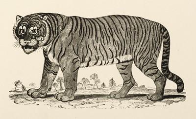 Lot 40 - Bewick (Thomas). Figures of Lion, Tiger, Elephant, and Zebra, 1799