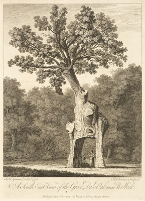 Lot 41 - Evelyn (John). Silva, 1776