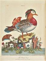 Lot 445 - Encyclopaedia Londinensis